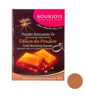 پودر برنزه بورژوآ مدل دلیس د پودر شماره 54 Bourjois Delice De Poudre Bronzing Powder 54