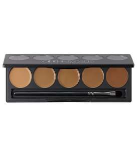 پالت رنگ سینما سکرت سری 300 Ultimate Foundation 5-in-1 PRO Palette, 300 SeriesTM