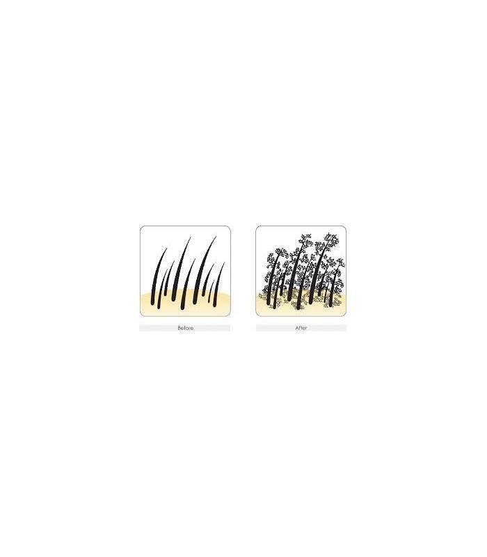 پودر پرپشت کننده مو سامسون هیر فیبرز Hair Fibers Refill kit
