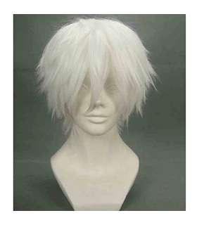 کلاه گیس مردانه RightOn Cool Men Short Wigs with Wig Cap Silvery White