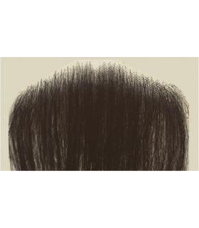 سبیل مصنوعی یونا با تارهای موی طبیعی Uona Natural Mustache