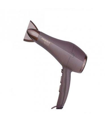 سشوار پرنسلی Princely PR240AT Hair Dryer