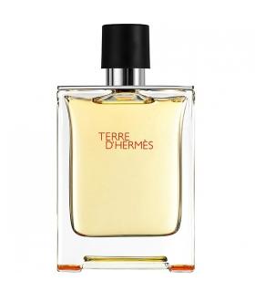 ادکلن مردانه هرمس تره دی هرمس Hermes Terre DHermes Eau De Toilette For Men