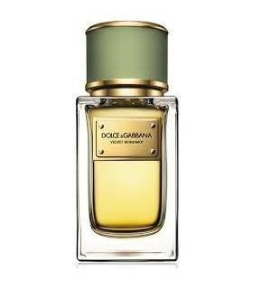 عطر مردانه دلچی گابانا ولوت برگامت Dolce & Gabbana Velvet Bergamot